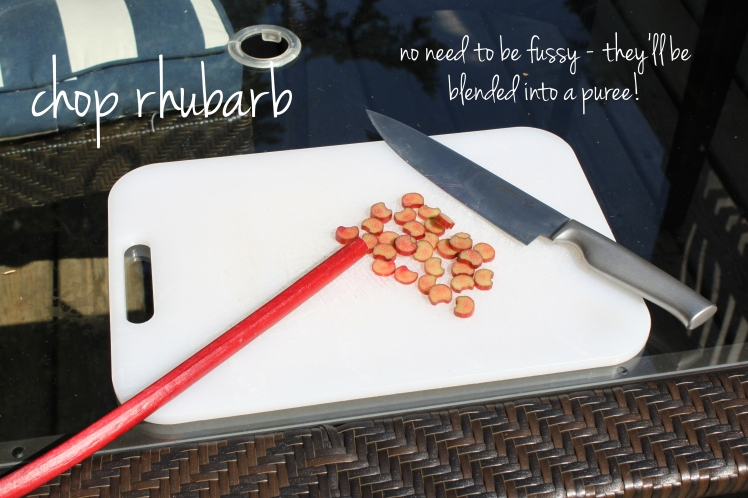 raspberry rhubarb sangria popsicles